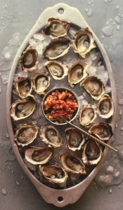 Oysters- A Taste of the Sea